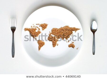 Carte du monde grain plaque pièces blanche concepts Photo stock © greatdividephoto