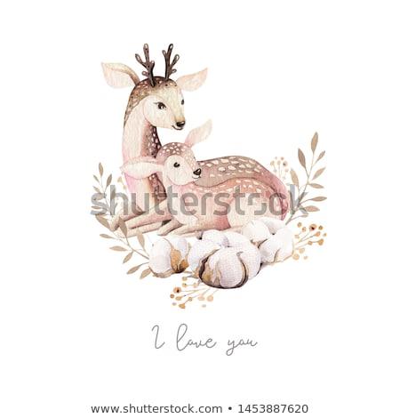 bambi 1 Stock photo © kovacevic