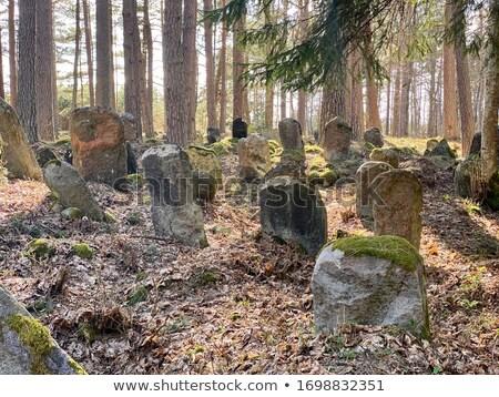 Old cemetery Stock photo © Elenarts