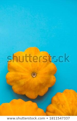 Jaune battant soucoupe squash brillant Photo stock © bobkeenan