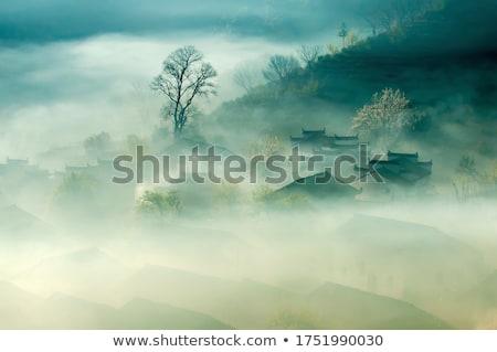 camino · árbol · cielo · flor · nubes · hoja - foto stock © loopall