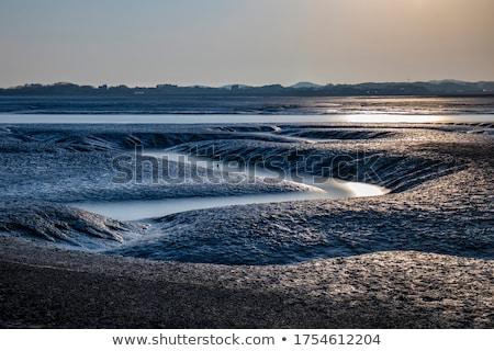 mud flat Stock photo © jeayesy