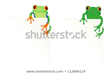Green tree frog sitting on blank paper Stock photo © PiXXart