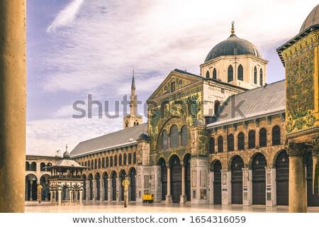 Oude moskee Syrië mijlpaal vogel architectuur Stockfoto © bbbar