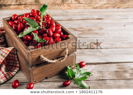 Maduro hoja blanco alimentos naturaleza crecimiento Foto stock © Masha
