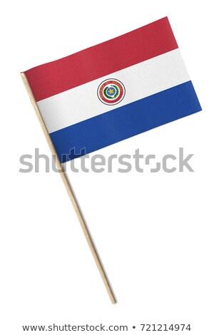 Miniatűr zászló Paraguay izolált vágási körvonal megbeszélés Stock fotó © bosphorus