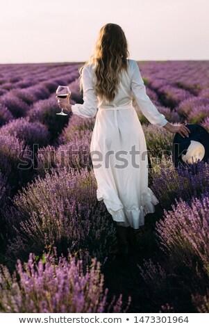 boeket · lavendel · picknickdeken · paars · witte · bloemen - stockfoto © ivonnewierink