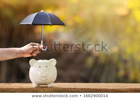 Protection money Stock photo © Kotenko