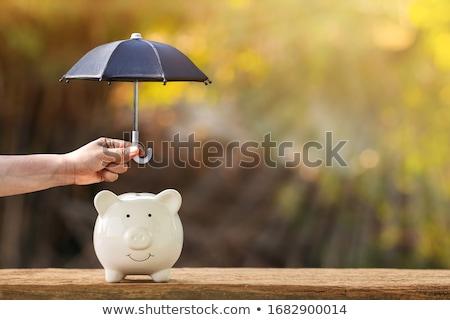 protección · dinero · paraguas · vector · financieros · negocios - foto stock © Kotenko