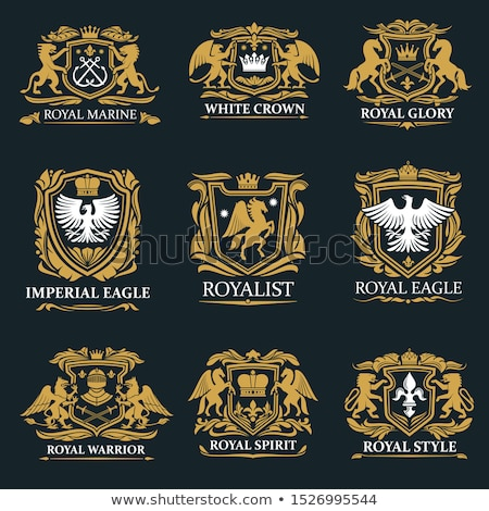 Eagle with shield and emblem  Stock photo © dagadu