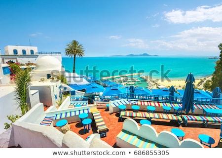 Belo Tunísia colagem Tunis cidade mar Foto stock © HypnoCreative