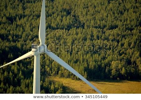 風力タービン 26 風景 緑 青 業界 ストックフォト © LianeM