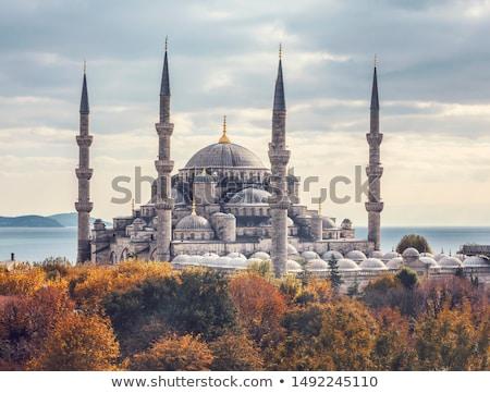 мечети · Турция · внешний · Стамбуле · мусульманских · религиозных - Сток-фото © sophie_mcaulay