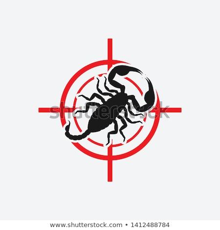 Target scorpione vettore tiro sfondo Foto d'archivio © tanais