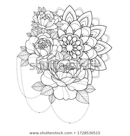 Henna kártya részletes kézzel rajzolt egy oldal Stock fotó © artplay