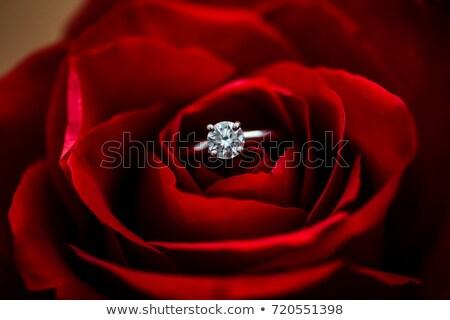 赤いバラ · リング · 黒 · 結婚式 · 中心 - ストックフォト © taden