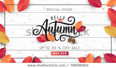 Autumn vector background with leafs. Stock photo © beholdereye
