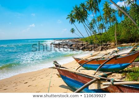 mooie · zeegezicht · vissen · boten · water · strand - stockfoto © hofmeester