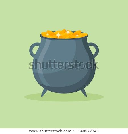 Caldeirão dinheiro grama folha metal ouro Foto stock © Alegria111