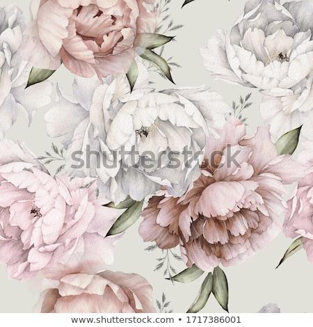 Romantikus virágok rózsaszín fehér virágok váza virág Stock fotó © MKucova