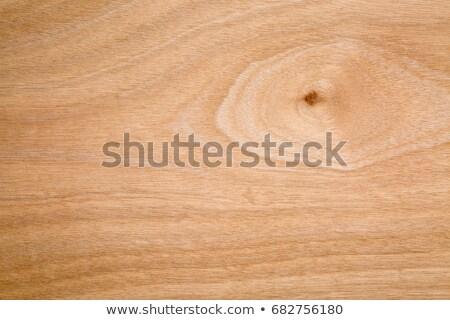 texture of okoume marine plywood Stock photo © PixelsAway