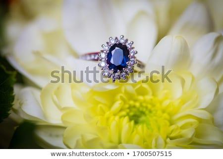Gyémánt zafír eljegyzési gyűrű fehér arany doboz Stock fotó © REDPIXEL