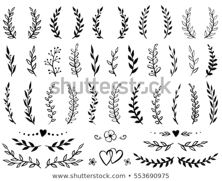 white floral laurel wreath vector set stock photo © beaubelle