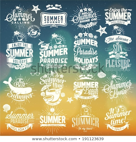 labels for summer calligraphic designs stock photo © nokastudio