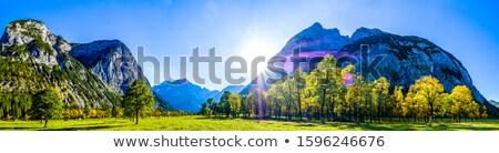 Idilli hegy terjedelem tájkép fű erdő Stock fotó © manfredxy