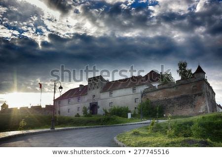 starych · twierdza · Hill · piękna · zamek · Ukraina - zdjęcia stock © pixachi
