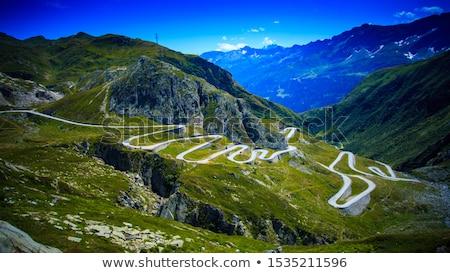 道路 アルプス山脈 自然 画像 夏 旅行 ストックフォト © ultrapro