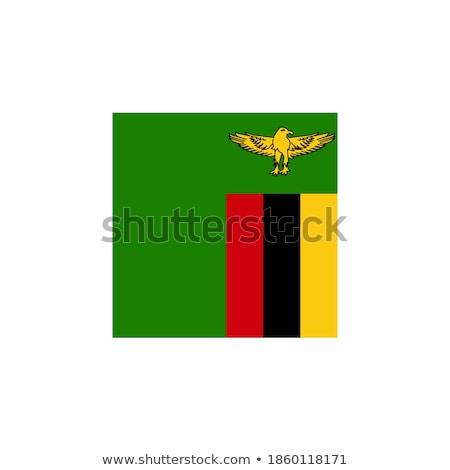 Zambia · zászló · gomb · világ · zöld · kék - stock fotó © mayboro1964