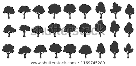 tree silhouette with flowers symbol of nature stock photo © morphart