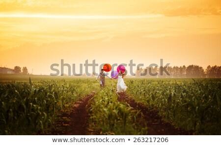 paar · lopen · man · vrouw · lopers - stockfoto © dariazu