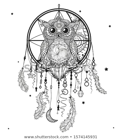 dreamcatcher owl, vector Stock photo © beaubelle