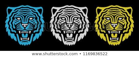 тигр кошки лице силуэта иллюстрация Сток-фото © silverrose1