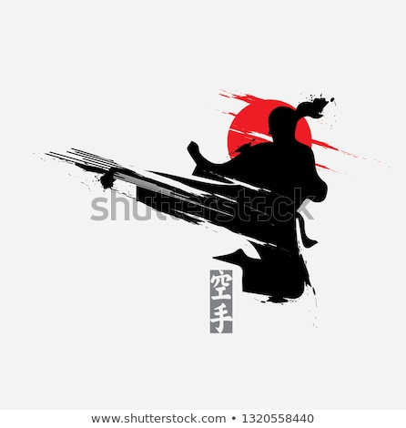 Karate training – silhouette Stock photo © Valeriy