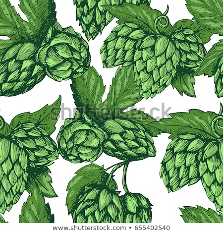 colored beer hand drawing pattern stock photo © netkov1