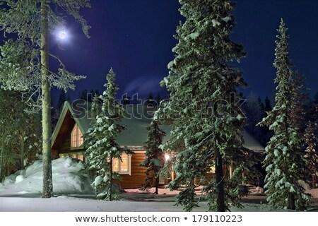 bois · maison · hiver · bois · crépuscule · route - photo stock © paha_l