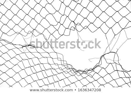 Wire netting Stock photo © mehmetcan
