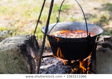 Goulash in cauldron Stock photo © Nneirda