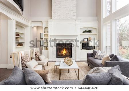 美しい · リビングルーム · 暖炉 · ソファ · カップル · 現代 - ストックフォト © jrstock