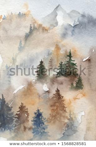 vazio · branco · foto · estúdio · interior · limpar - foto stock © expressvectors