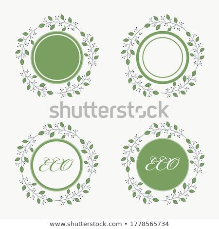 Green leaves frame isolated on white. EPS 10 Stock photo © beholdereye