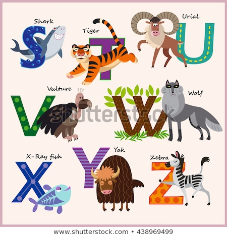 kids vector zoo alphabet with animals part 3 stock photo © natalya_zimina