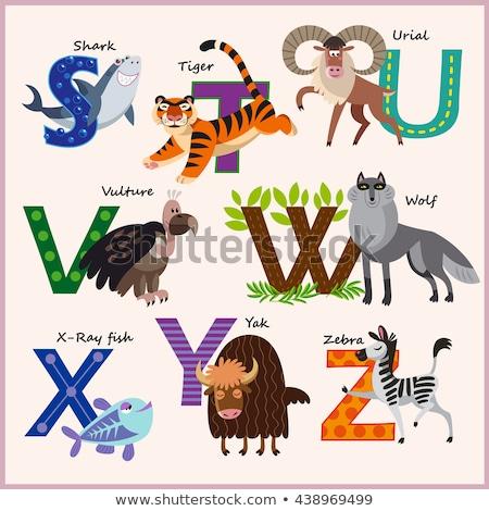 Gyerekek vektor állatkert ábécé állatok illusztráció Stock fotó © natalya_zimina