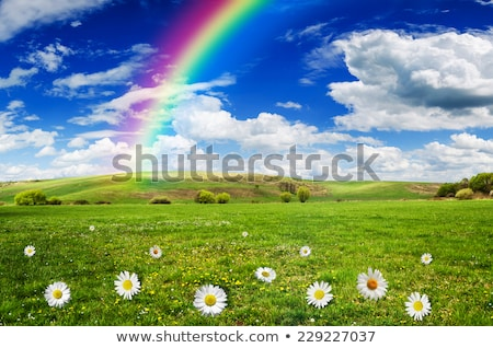 A beautiful scenery with a rainbow in the sky Stock photo © bluering