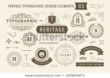 vintage decorations elements set stock photo © genestro