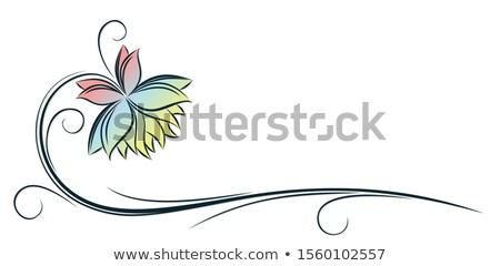 虹 · 蓮 · 花弁 · 描いた · 明るい · 火の粉 - ストックフォト © blackmoon979