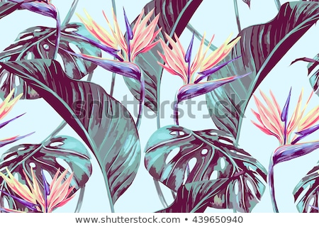 seamless pattern with jungle palm leaves on purple background stock photo © bluelela